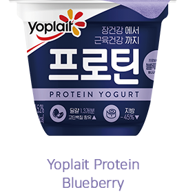 Yoplait Protein Blueberry